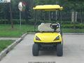 8 plazas carrito de golf eléctrico