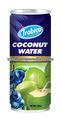 blueberry sabor de coco natural
