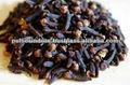 buena calidad filtrada palo primas especias secas de clavo de olor