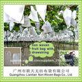 eco friendly no tejido de frutas bolsa de protección para el envasado