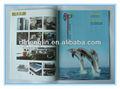 dongguan de lujo de impresión del catálogo