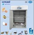 Los más vendidos en África Codorniz Incubadora incubadora de huevos de incubadora de codorniz