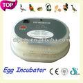 huevo de codorniz inflexión huevo incubadora automática dfi002