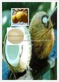 naturales extracto de coco