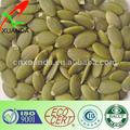 núcleos de las semillas de calabaza