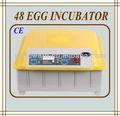 el mejor precio pequeño termostato para incubadora del huevo incubadora de huevos para la venta