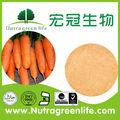 La mejor calidad& mejor venta de zanahoria en polvo o jugo de zanahoria en polvo