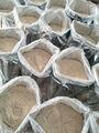 chino ajo en polvo de los compradores