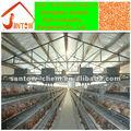 Calidad del precio barato de la cría de pollo jaula profesional de alta avícola