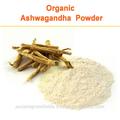 las raíces ashwagandha extractos de la india