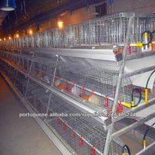bateria de gaiolas de galinhas poedeiras