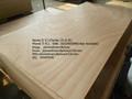 de caoba africana de madera contrachapada okume para la madera contrachapada chile del mercado