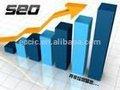 diseño de páginas web y el sitio web de seo y marketing de servicios