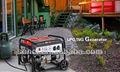 Motor nuevo de Senci Uso para hogar LPG Generador