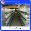 tipo h de pollos de engorde de aves de corral equipos jaula