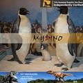 Mi dino- mechanicals animales modelo de pingüinos tamaño de la vida de los animales de la edad