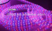 Red+blue led luz de la cuerda( apartamento 4 hilos)/deiluminación