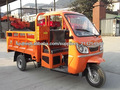 150cc/ 200cc/ 250cc Triciclo carga HL150ZH-C01