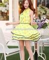 Pasos bastante 2014 ropa las mujeres modelos vestido de de la norma en chifon/guangzhou fabricante de prendas de vestir
