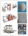 máquina de fazer bandejas de isopor de comida de plástico / caixa
