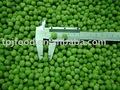 Guisantes congelados verde( alta calidad)
