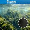 /p-detail/100-Natural-Algas-Fertilizantes-Org%C3%A1nicos-300000117751.html