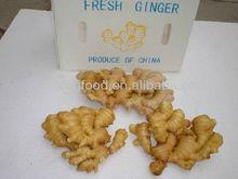 200g fresh ginger