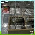Dos de visón piso jaula( anping fábrica)