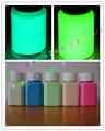 brillan en la pintura / pintura fotoluminiscente acrílico a base de agua oscura/pintura luminosa/brillan en la capa oscura