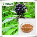 Ginseng siberiano P.E. Eleutheroside B + E 0.8 % , 1.2 %