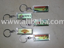 Solar Power Flashing Key Chain
