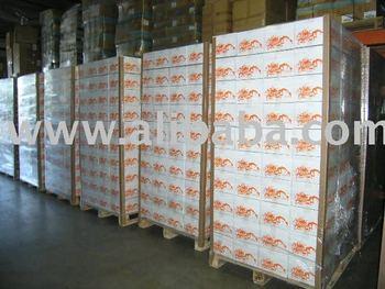 100-120 Cases Bulk Field White Box Recreational Paintballs Pallet Skid