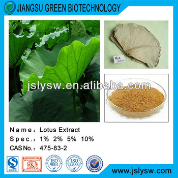 Flavone powder from Lotus Leaf Extract