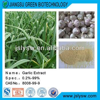 Garlic Extract/Allium sativum L