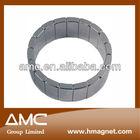 arc neodymium motor magnets