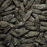 Tonka Bean Seeds