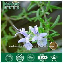 Animal Nutrition Rosemary Extract with 15% Rosmarinic Acid HPLC