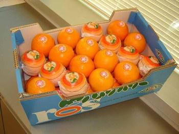 Cara Cara Pink Oranges