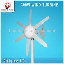 300w wind power
