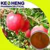 pomegranate peel extract powder/punicalagin pomegranate peel extract