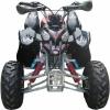 2008 New Design 250cc Quad ATV