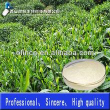 green tea extract EGCG(Epigallocatechin gallate)