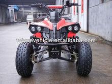Mini ATV quad 110CC