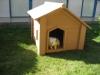 Wpc Pet House