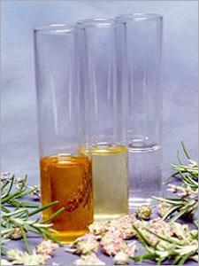 L'absolu de Champaca, huile de jojoba, l'eau de Rose indienne, savonnent les huiles essentielles, composés de savon, parfums de savon, huile de graines de carotte