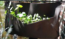 versorgung verschiedenen stil wasser gärtnerei vorratspeicherung wand pflanzer