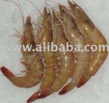 Frozen Shrimps