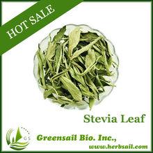 Sweet chrysanthemum leaves tea super stevia dry leaves sweet sugar