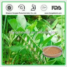 100% Natural polygonatum odoratum p.e