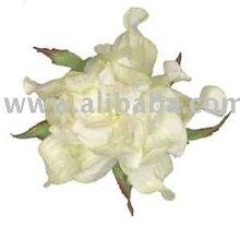 Black Gardenia Paper Flower